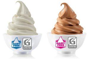 Diary Free Frozen Yogurt